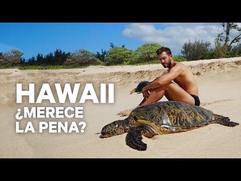 LO MEJOR Y LO PEOR DE HAWAII | enriquealex