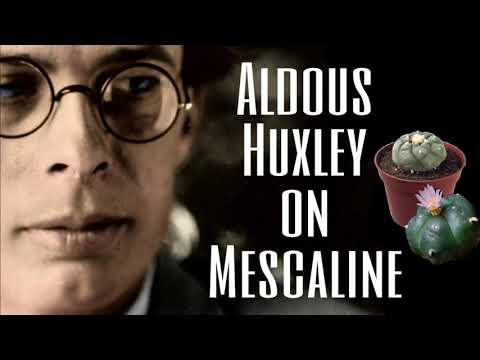 Aldous Huxley on Mescaline ( Interview ) 1961