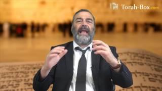 Conseils pour réussir sa future vie d'adulte (Rav Raphaël Sadin)