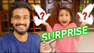 a surprise🤩 vlog // le rashi eppisode-7