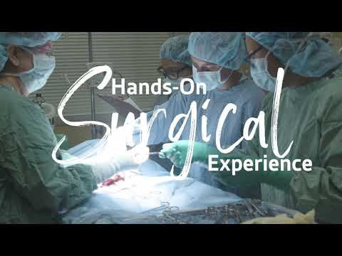 Vet Tech Institute: Surgical Experience