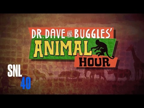 Dr. Dave & Buggles - SNL