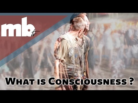 What Is Consciousnesses, Spirituality and Your Personal Awakening?