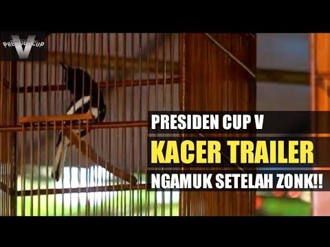 PRESIDEN CUP V : Kacer TRAILER NGAMUK Setelah ZONK Di Sesi Sebelumnya