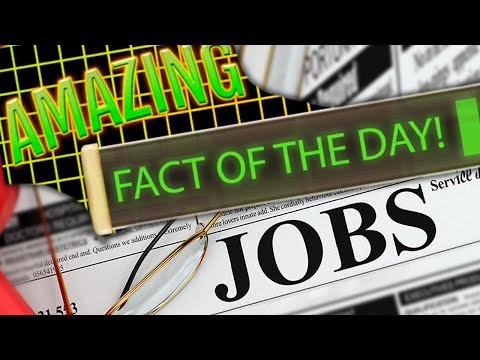 Americans WAY OFF On Guessing The Unemployment Rate [Amazing Fact]