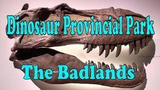 The Alberta Badlands & Dinosaur Provincial Park -  a Video Tour