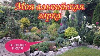 Альпийская горка в конце июля.Ландшафтный дизайн своими руками.Дача.Красивые цветники.Сад .