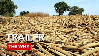 Land Rush - Why Poverty? Trailer