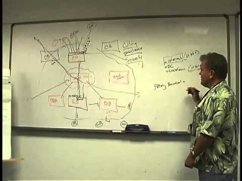 Panda lecture from Apr 30, 2008: The OTP server internals