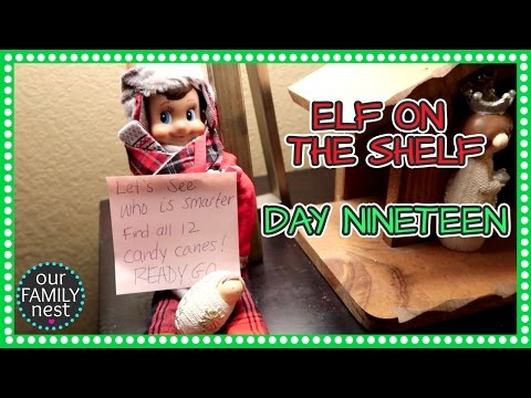 ELF ON THE SHELF DAY 19  CANDY CANE SEARCH