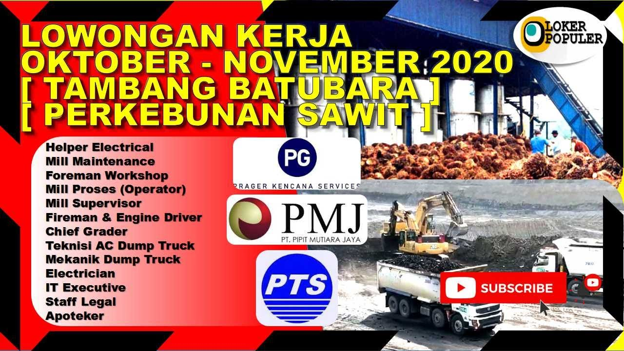 Lowongan Kerja Oktober November 2020 Sektor Tambang Batubara Dan Perkebunan Sawit Youtube
