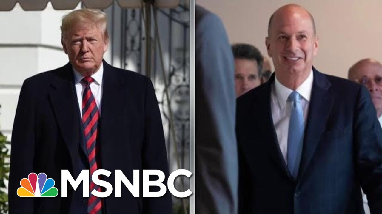 Impeachment Hearing Surprises With New Allegation Against Trump | Rachel Maddow | MSNBC