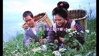 「花一色 〜野菊のささやき〜」東宝映画「野菊の墓」主題歌 松田聖子cover misty