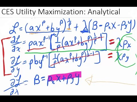 CES Utility Maximization: Analytical Results *See Video Description*