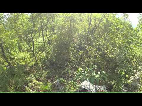 Athens Big Fork Trail - Unable to find Mystical Cave