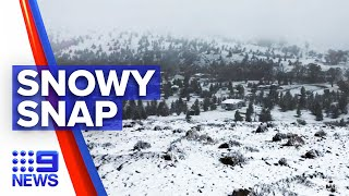 Snow fall in parts of South Australia | 9 News Australia