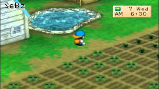 Save Hot House From Hurricane With Lumber Trick (Not Guaranteed) Harvest Moon Back To Nature