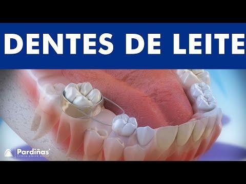 os-dentes-de-leite-e-o-uso-de-mantenedores-de-espaço-©