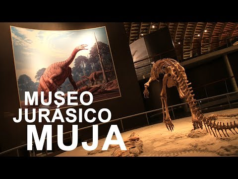vídeo sobre The Jurassic Museum – MUJA