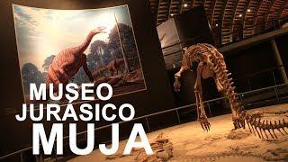 Museo Del Jurásico Asturiano Muja Picos De Europa Incatur