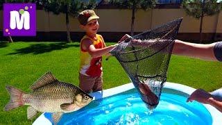 Рыбалка на карася и сома Живые раки и крабы Макс ловит рыбу в бассейне с жабами Пугаем Катю