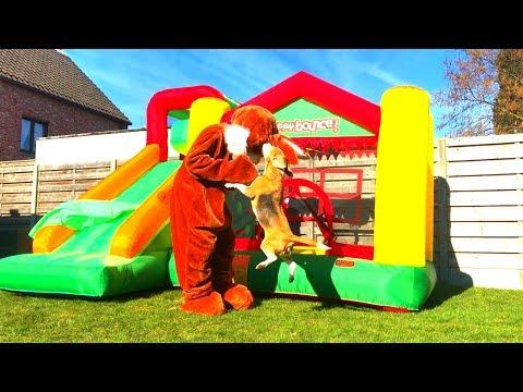 Dogs vs Monster Bunny : Cute Beagle Dogs Louie & Marie