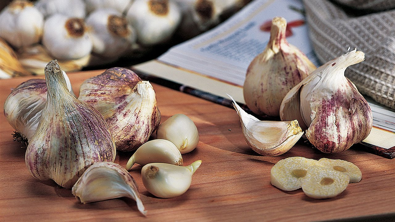 How to Grow Garlic Bulbs - Gardening Tips and Advice