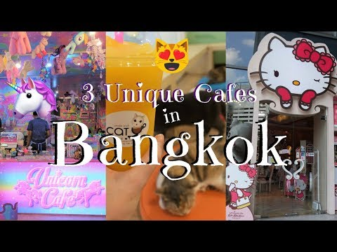 3 Unique Cafes in Bangkok | Unicorn Cafe, Cat Cafe, Hello Kitty