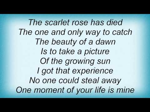 Edguy - Scarlet Rose Lyrics