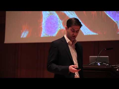 Identification of new drugs for the treatment of prostate cancer