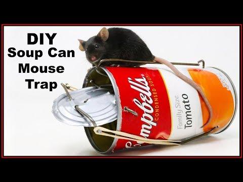 DIY Soup Can Mouse Trap - Double Catch -  Mousetrap Monday