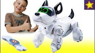 Про Игрушки Роботы для детей Веселый интерактивный робот щенок PupBo Silverlit Развивающие игрушки