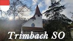 Trimbach (CH - SO) Glocken der christkath. Kirche