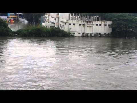 Chennai Adyar river flood