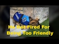 Police Dog  : A Police Dog Got Fired For Being Too Friendly