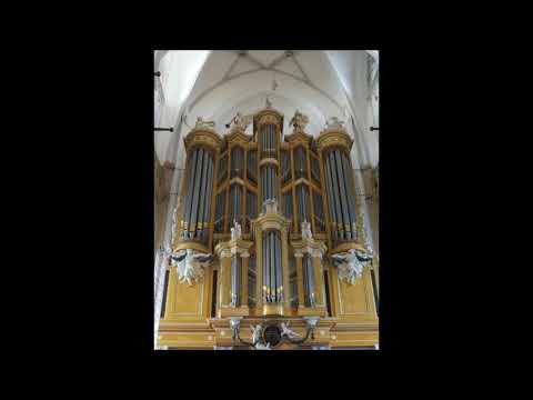 Wie schön leuchtet der Morgenstern - Wim Bomhof - orgel Heusden