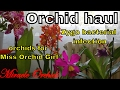 Orchid haul - zygopetalum problems & orchids for Miss Orchid Girl