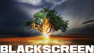 Thunderstorm for Sleep Soothing Rain Sounds for Study Rest and Meditation