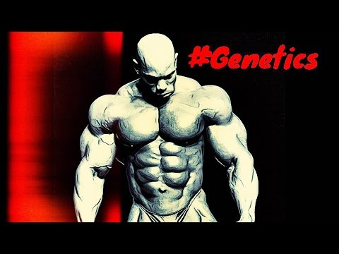 BODYBUILDING MOTIVATION - GENETIC LIMITS