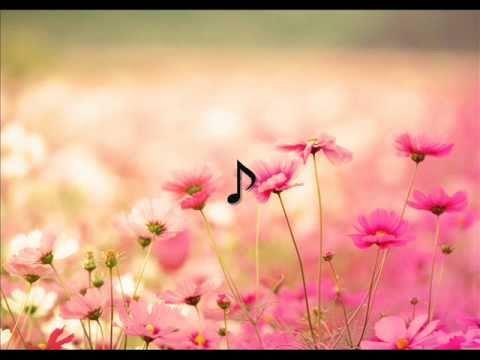 Gipsy Kings - Caminando Por La Calle (lyrics)