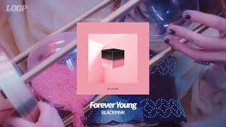 블랙핑크의 아련하고 시원한 여름 느낌의 노래 모음 Playlist MP3