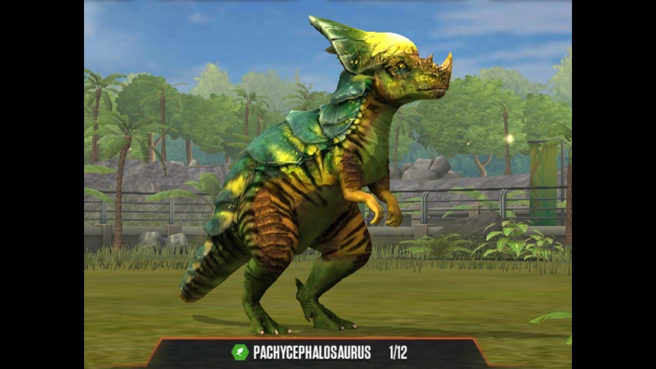 PACHYCEPHALOSAURUS Level 40 Jurassic World The Game