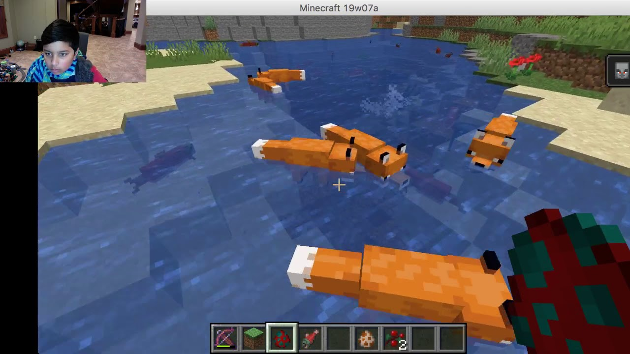 Minecraft Foxes eat fish!