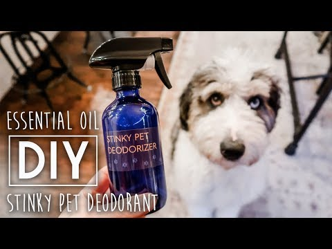 DIY Stinky Pet Deodorizer Spray