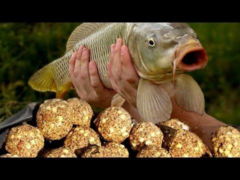 Супер простая и уловистая прикормка для многих видов рыб.
