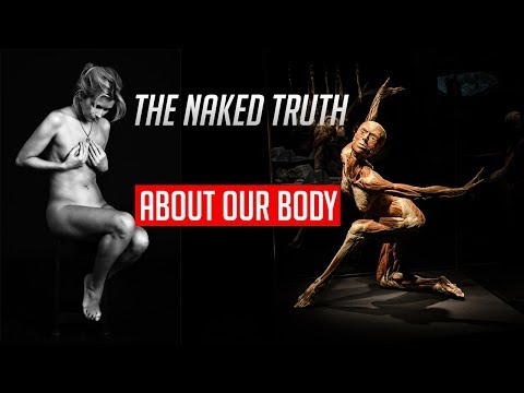 The Naked Truth About Our Body - Body Worlds: Pulse