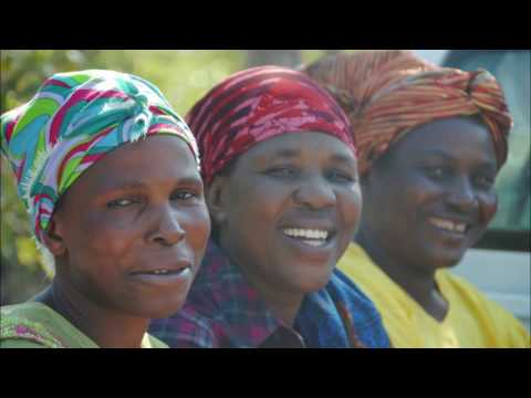 Six incredible weeks in Zambia: Malundu project