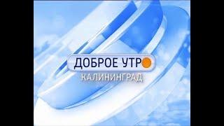 Доброе утро, Калининград (24.11.17)