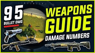 BLACKOUT : WEAPONS GUIDE - All Gun Stats , Bullet Damage , Recoil & More [UPDATED]