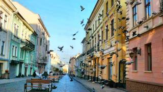 видео Черновцы (Винницкая область)